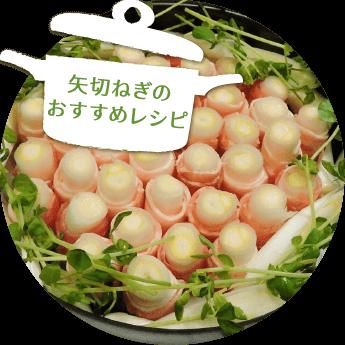 矢切ねぎのおすすめレシピ