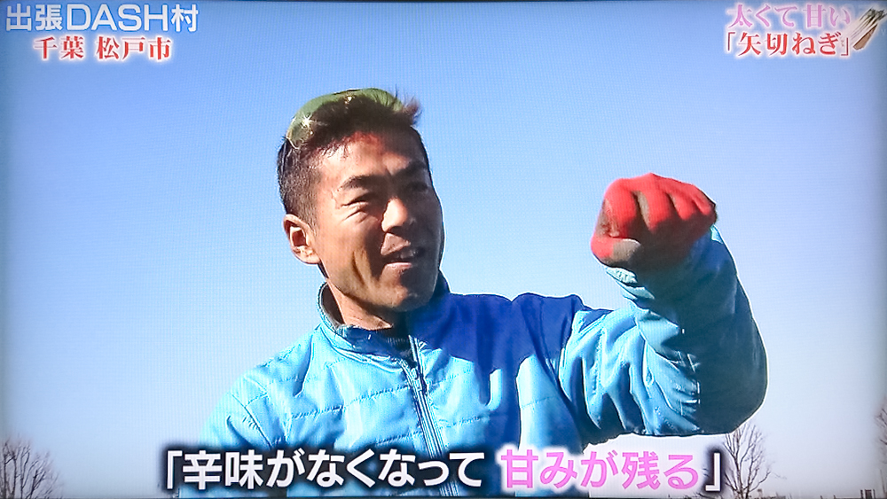 日本テレビ ザ!鉄腕!DASH!!